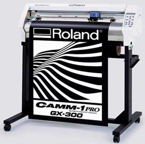 roland300